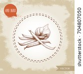 french green beans pods bunch... | Shutterstock .eps vector #704807050