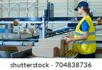 postal sorting office workers... | Shutterstock . vector #704838736