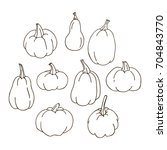 isolated contour pumpkins on... | Shutterstock .eps vector #704843770