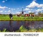 Typical Dutch Landscape With...