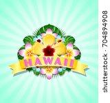 hawaiian document background in ... | Shutterstock .eps vector #704894908