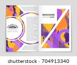 abstract vector layout... | Shutterstock .eps vector #704913340