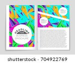 abstract vector layout... | Shutterstock .eps vector #704922769