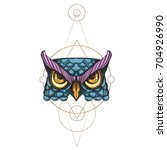 muzzle of an owl illustration... | Shutterstock .eps vector #704926990