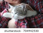 a very relaxed cat. loving life   Shutterstock . vector #704942530