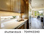 luxury kitchen features brown... | Shutterstock . vector #704943340