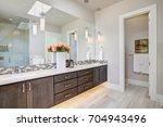 contemporary master bathroom... | Shutterstock . vector #704943496