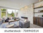 modern great room features a... | Shutterstock . vector #704943514