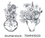 vector floral compositions with ... | Shutterstock .eps vector #704945020