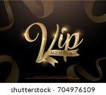 elegant vip member invitation... | Shutterstock .eps vector #704976109