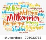 willkommen  welcome in german ...   Shutterstock .eps vector #705023788