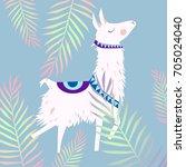 alpaca illustration | Shutterstock .eps vector #705024040