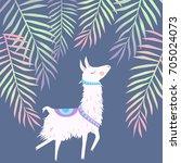 alpaca illustration | Shutterstock .eps vector #705024073