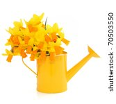 Narcissus Flower Arrangement I...