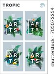 set of bright tropical...   Shutterstock .eps vector #705073354