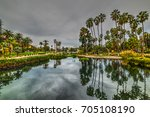 palm trees in echo park on a...   Shutterstock . vector #705108190
