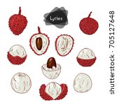 hand drawn sketch style lychee... | Shutterstock .eps vector #705127648