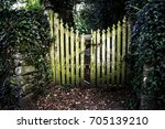 old stone wall and gate  | Shutterstock . vector #705139210