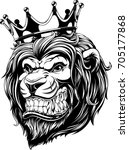 vector illustration the lion... | Shutterstock .eps vector #705177868