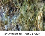 impressionism as a result of... | Shutterstock . vector #705217324