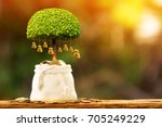 coin in the bag with growing to ... | Shutterstock . vector #705249229