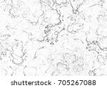 marble abstract fractal... | Shutterstock . vector #705267088
