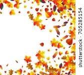 autumn leaves scattered... | Shutterstock .eps vector #705285154