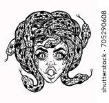 hand drawn beautiful artwork of ...   Shutterstock .eps vector #705290608