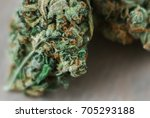 cannabis trichomes macro photo... | Shutterstock . vector #705293188