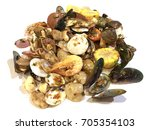 seafood mixed | Shutterstock . vector #705354103