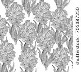 beautiful  seamless pattern... | Shutterstock . vector #705387250