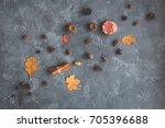 autumn composition. pattern... | Shutterstock . vector #705396688