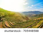 Douro Valley In Porto Wine...