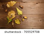 autumn leaves and acorns over... | Shutterstock . vector #705529708