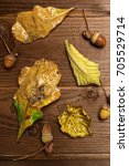 autumn leaves and acorns over... | Shutterstock . vector #705529714