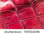 freshwater crocodile belly skin ... | Shutterstock . vector #705533698