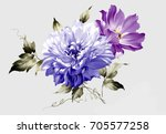 flowers are full of romance the ... | Shutterstock . vector #705577258