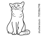 happy cat on a white background ...   Shutterstock .eps vector #705586798