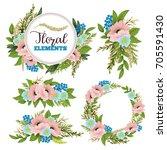 beautiful floral design... | Shutterstock .eps vector #705591430