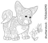 coloring page of welsh corgi... | Shutterstock .eps vector #705664090