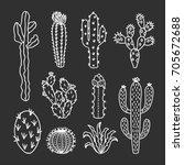 Cute Cactus Illustrations. Han...