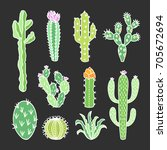 hand drawn cacti and succulent... | Shutterstock .eps vector #705672694