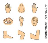 human body parts color icons... | Shutterstock .eps vector #705702379