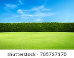 green leaves wall background | Shutterstock . vector #705737170