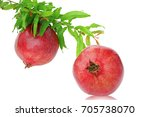 pomegranate with leaves... | Shutterstock . vector #705738070