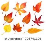 autumn leaves or fall foliage... | Shutterstock .eps vector #705741106