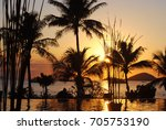 silhouette of palm trees at... | Shutterstock . vector #705753190