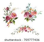 set watercolor flowers. hand... | Shutterstock . vector #705777436