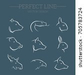 animal portrait set. vector... | Shutterstock .eps vector #705783724