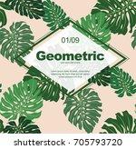 poster template  monstera vector | Shutterstock .eps vector #705793720